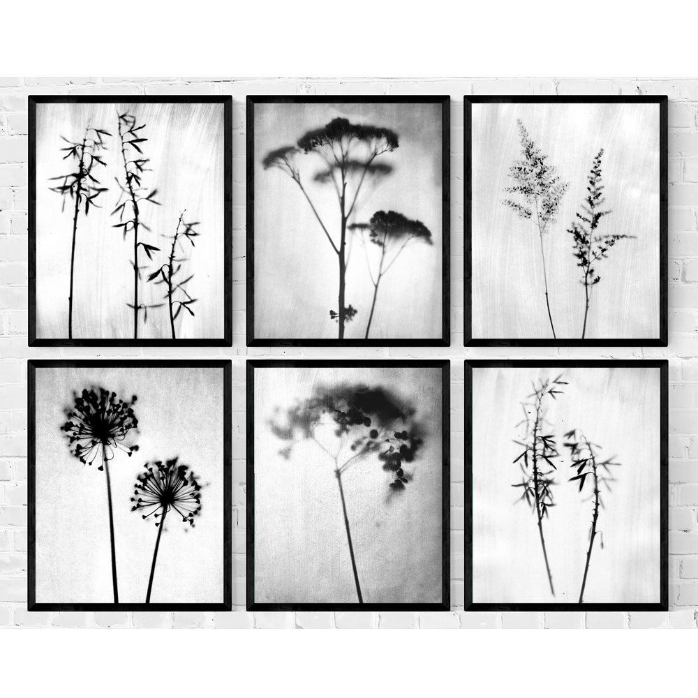 Set Of 6 Minimalist Botanical Photography Prints In Black And Etsy Floral Wall Art Prints Triptych Wall Art Black and white framed art
