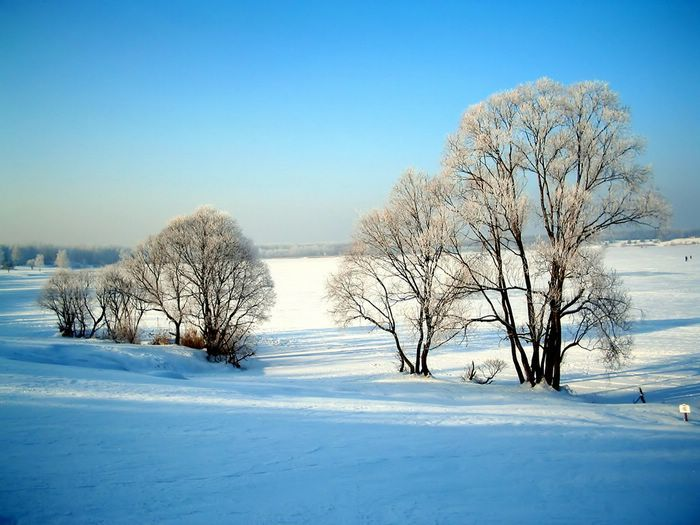 Scenic Winter HD Wallpapers Amazing Wallpaperz 700x525 Beautiful Scenery 42