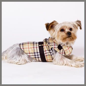 Mon Bonbon Checked Raincoat Pet Fashion Dog Coats Pet Clothes