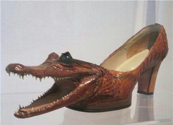 Crocodile head pointed shoe | Funky