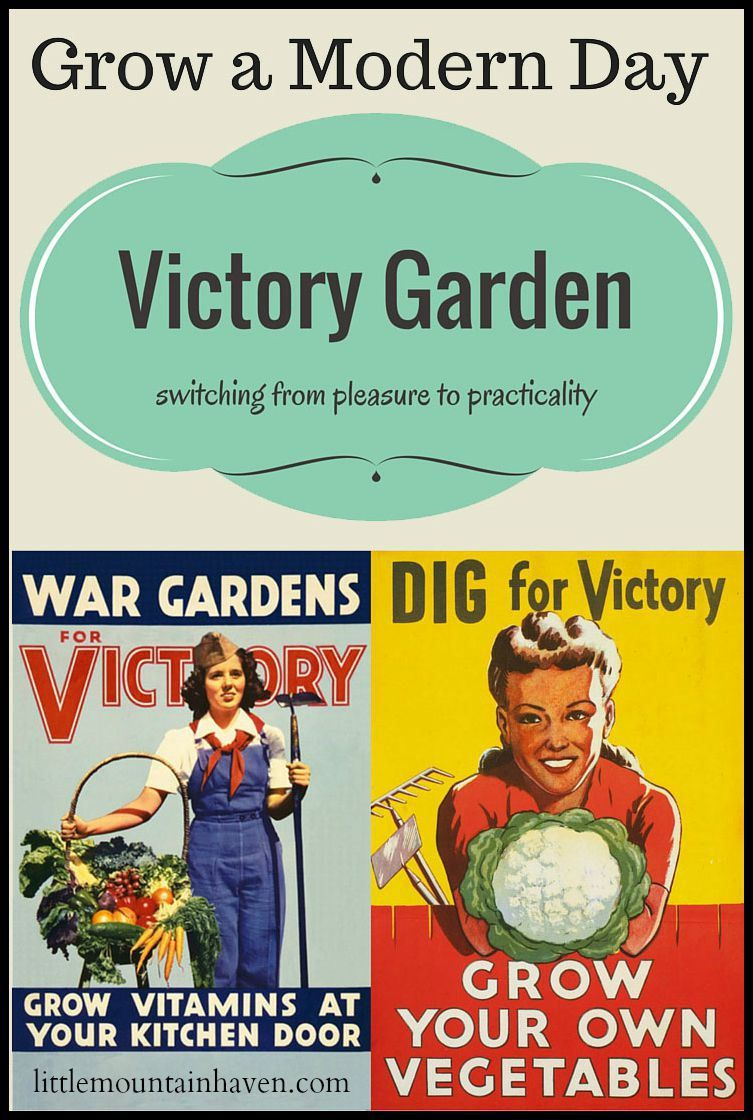 Victory Garden Plans & Design | Thoughts, Gardens and Modern