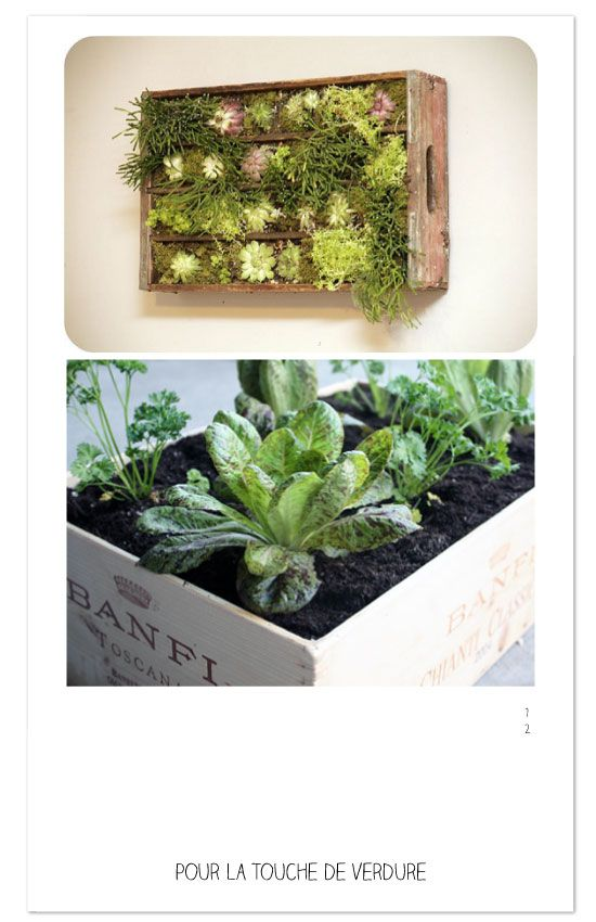 DIY-caisse-green-recyclage | jardinage | Pinterest | Caisse ...