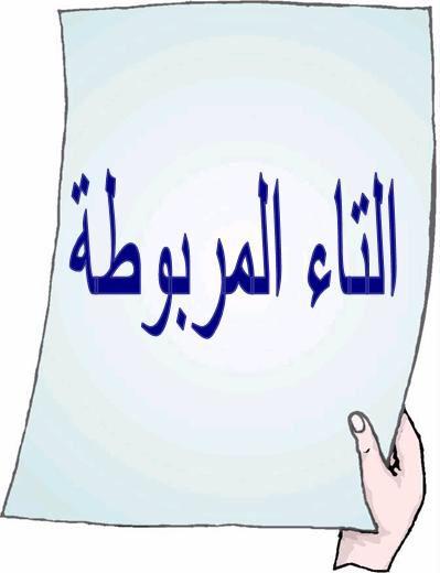 التاء المربوطة هي التاء التي تنطق هاء ساكنة عند الوقف عليها في آخر الكلمة وتوضع فوقها نقطتان للتفريق بينها وبي Fruit Basket Gift Arabic Words Fruit Basket