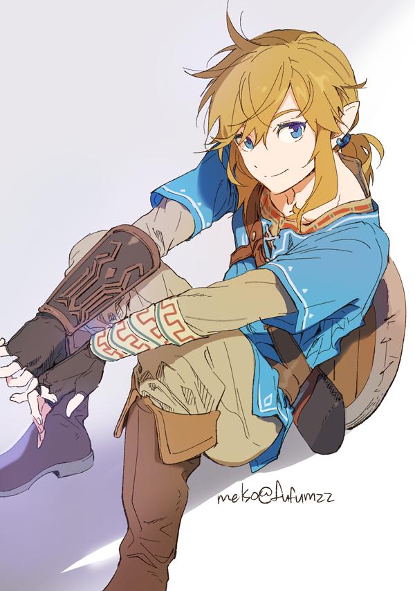 Melso On Twitter Legend Of Zelda Breath Legend Of Zelda Zelda Art