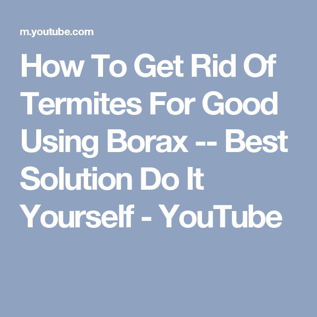 How To Get Rid Of Termites For Good Using Borax Best Solution Do It Yourself Youtube Termites Borax Termite Control