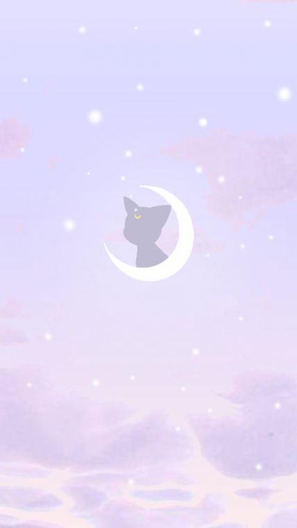15 Trendy Wallpaper Tumblr Cat Iphone Wallpapers