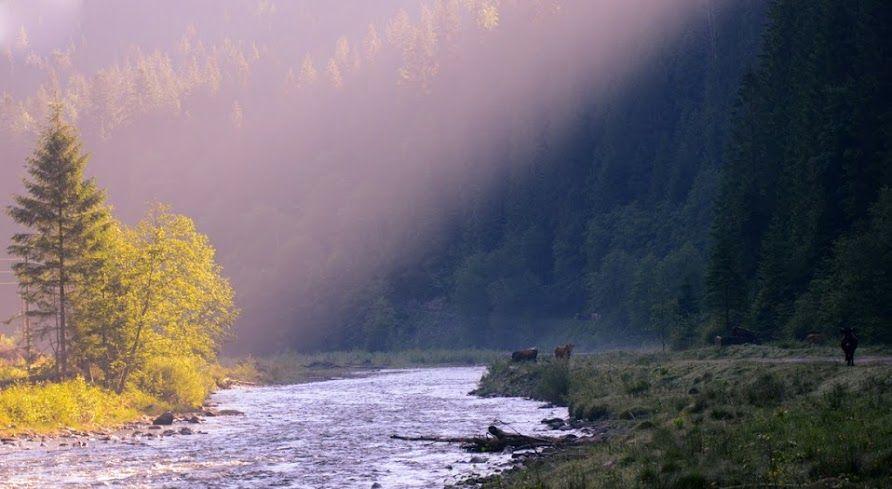 Карпатський тур - Google+ Carpathian mountains, Ukraine