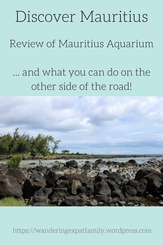 A visit to the Mauritius Aquarium   Julz's Mauritius ...