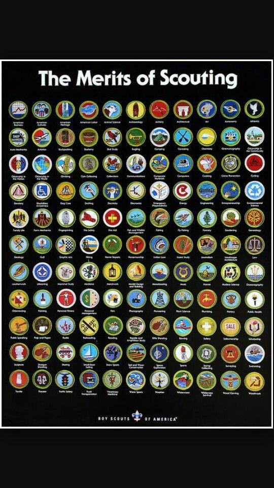 Merit Badges | boy scouts | Pinterest | Merit badge, Badges and ...