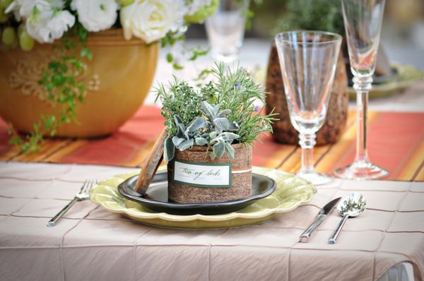 trio of herbs wedding favor-together for all thyme, will you rosemary me, and something else maybe