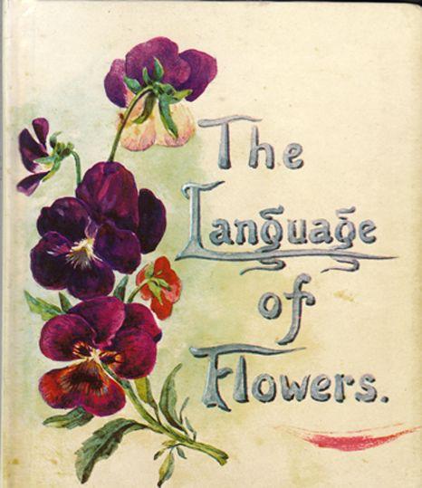 The Language Of Flowers Language Of Flowers Flower Meanings Pansies