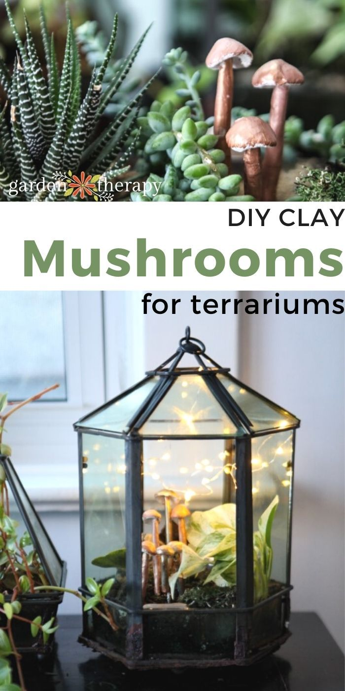 Photo of Add a Touch of Whimsy to Your Terrariums with DIY Clay Mushrooms