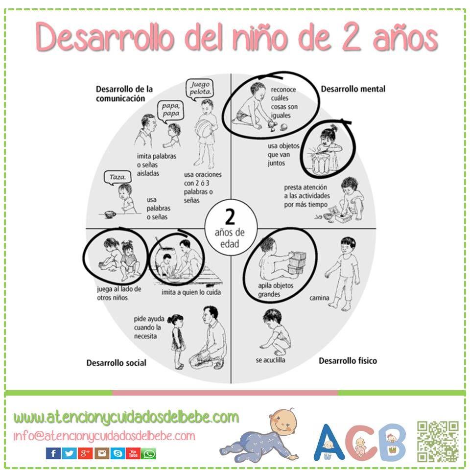 Desarrollo Del Niño De 2 Años Atencionycuidadosdelbebe Desarrolloinfantil Educacion Emocional Psicologia Infantil Psicologia Niños