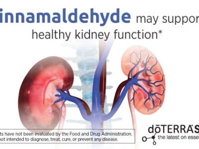 Capd Dialysis Kidney Infection And Doterra
