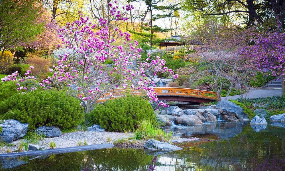 crer un jardin japonais Crer Un Jardin