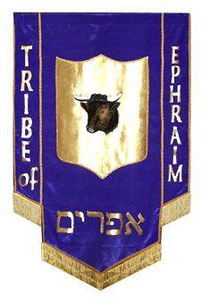Image result for The Israeli flag of Ephraim