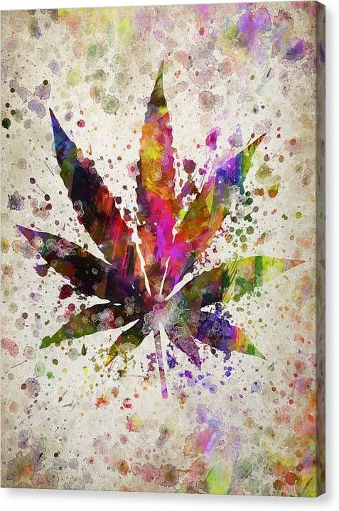 Marijuana Leaf in Color Canvas Print / Canvas Art by Aged Pixel