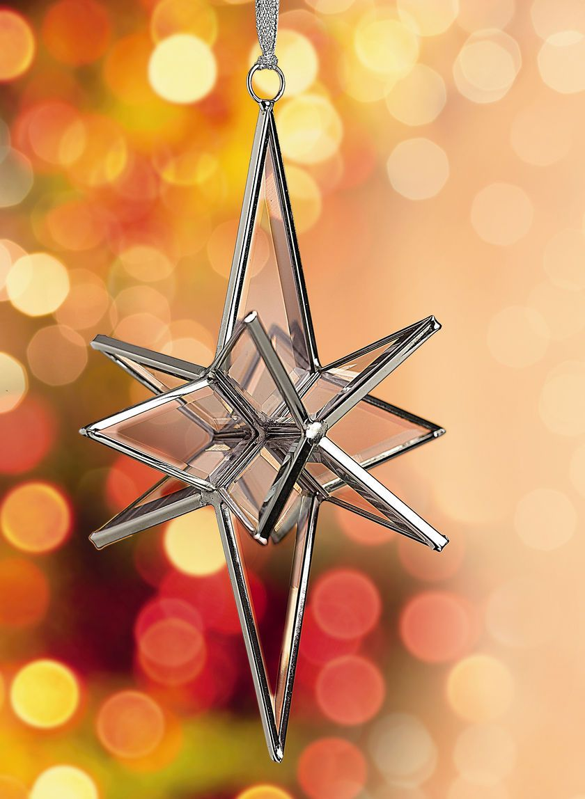 Moravian star prism star or advent star gardeners tree