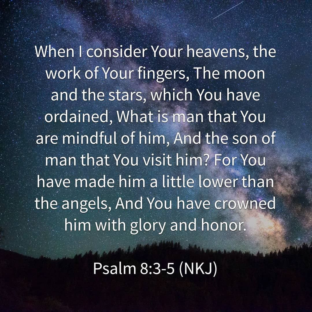 Image result for Psalm 8