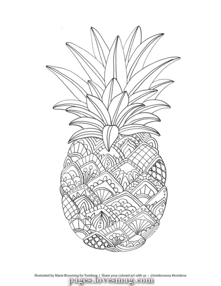 Excellent Fruit coloring pages Coloring web page of printable pineapple #adultcoloringpages