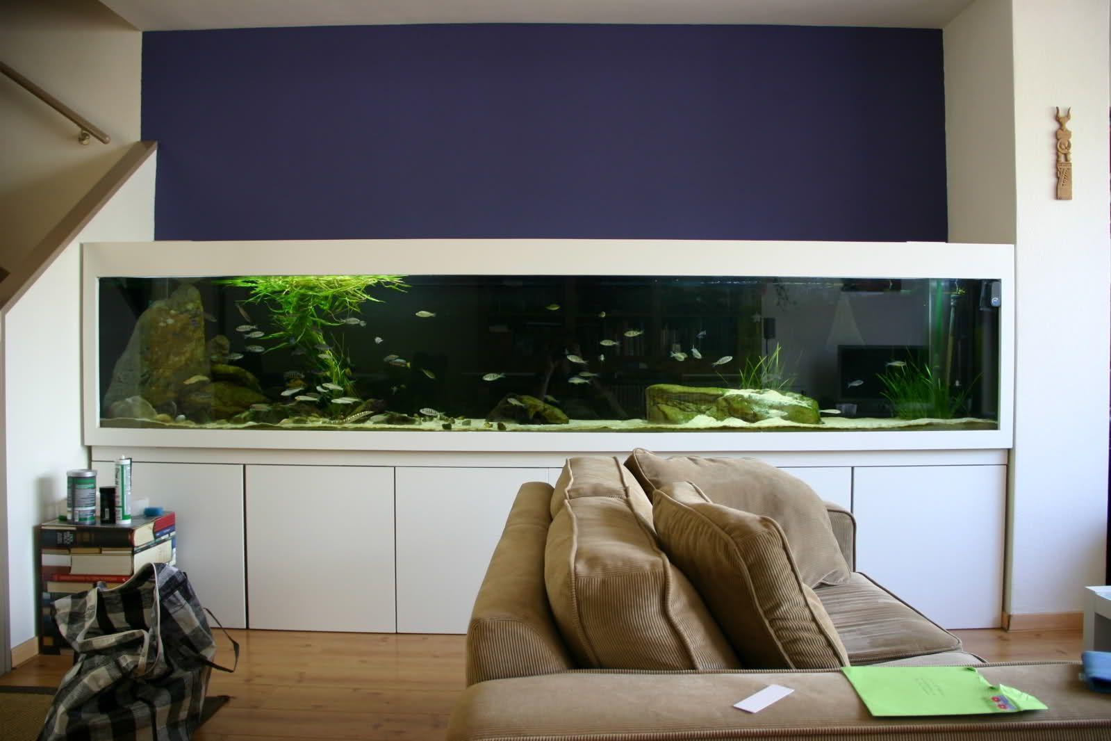 Kast Op Maat Met Aquarium Google Zoeken Tank Aquaria