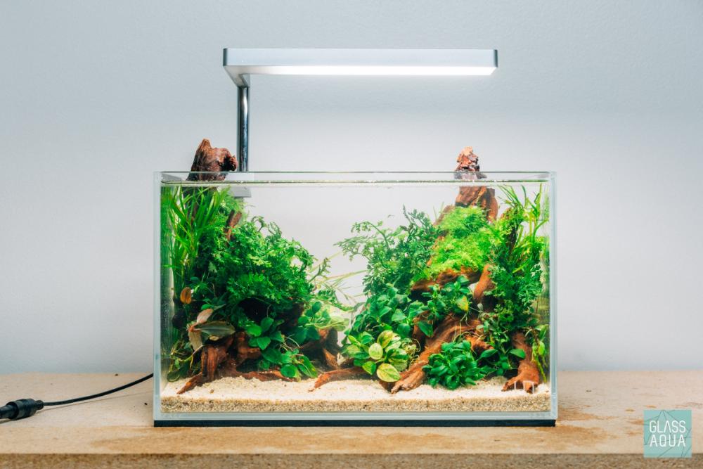 Planted Betta Fish Nano Tank Aquarium Glass Aqua Nano Aquarium Fish Tank Terrarium Betta Fish