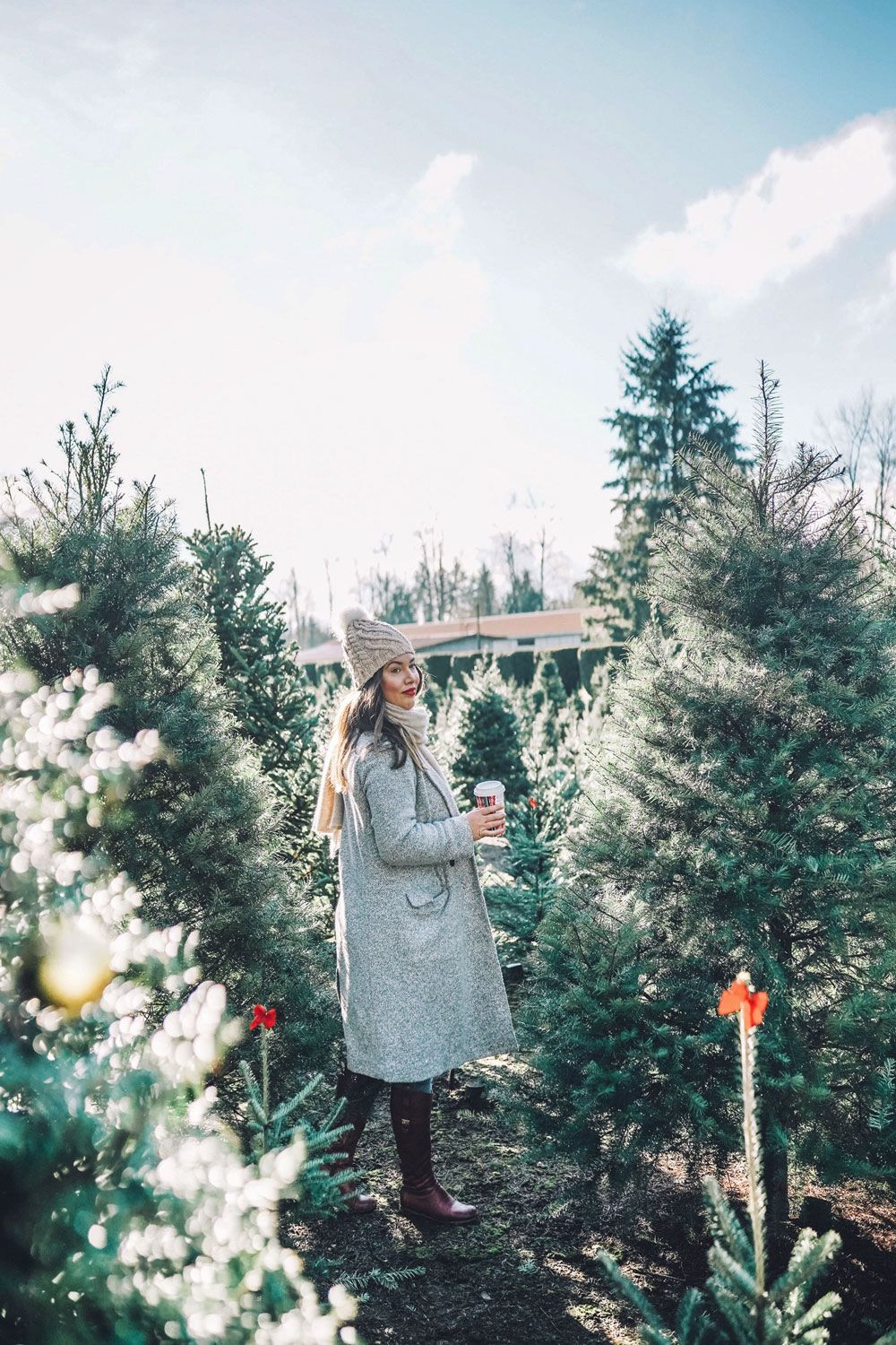 Christmas Tree Farms Vancouver Christmas Tree Farm Christmas Aesthetic Tree Farms