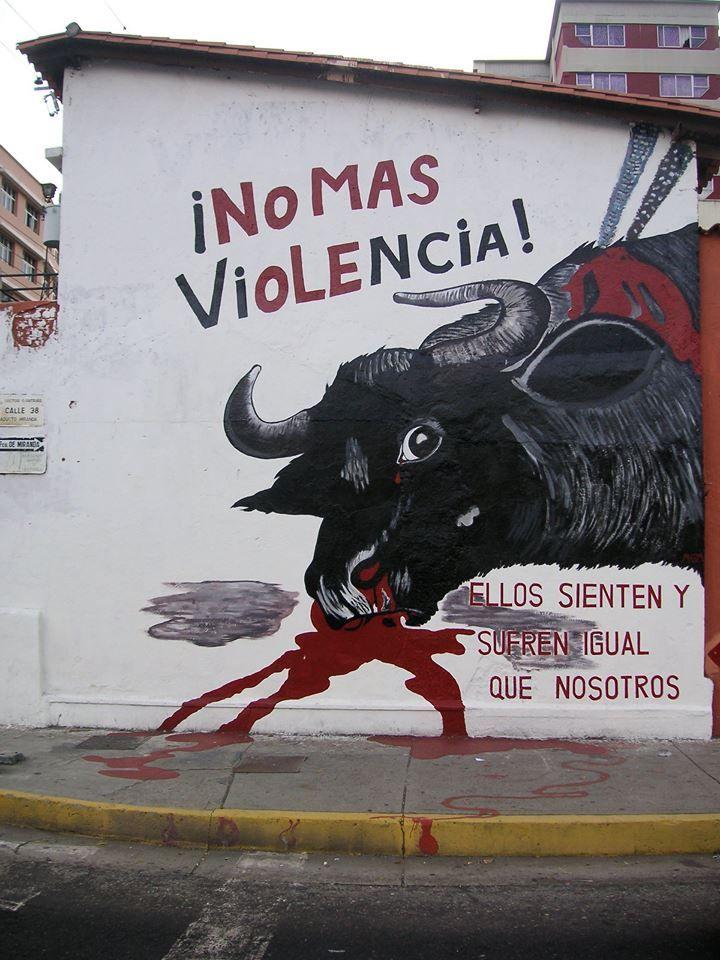 No Màs Violencia Animals Animal Advocacy Animal Rights