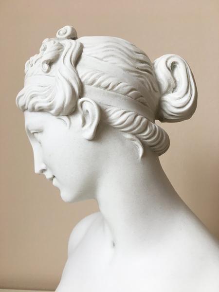 Venus Bust Sculpture - Goddess of Love