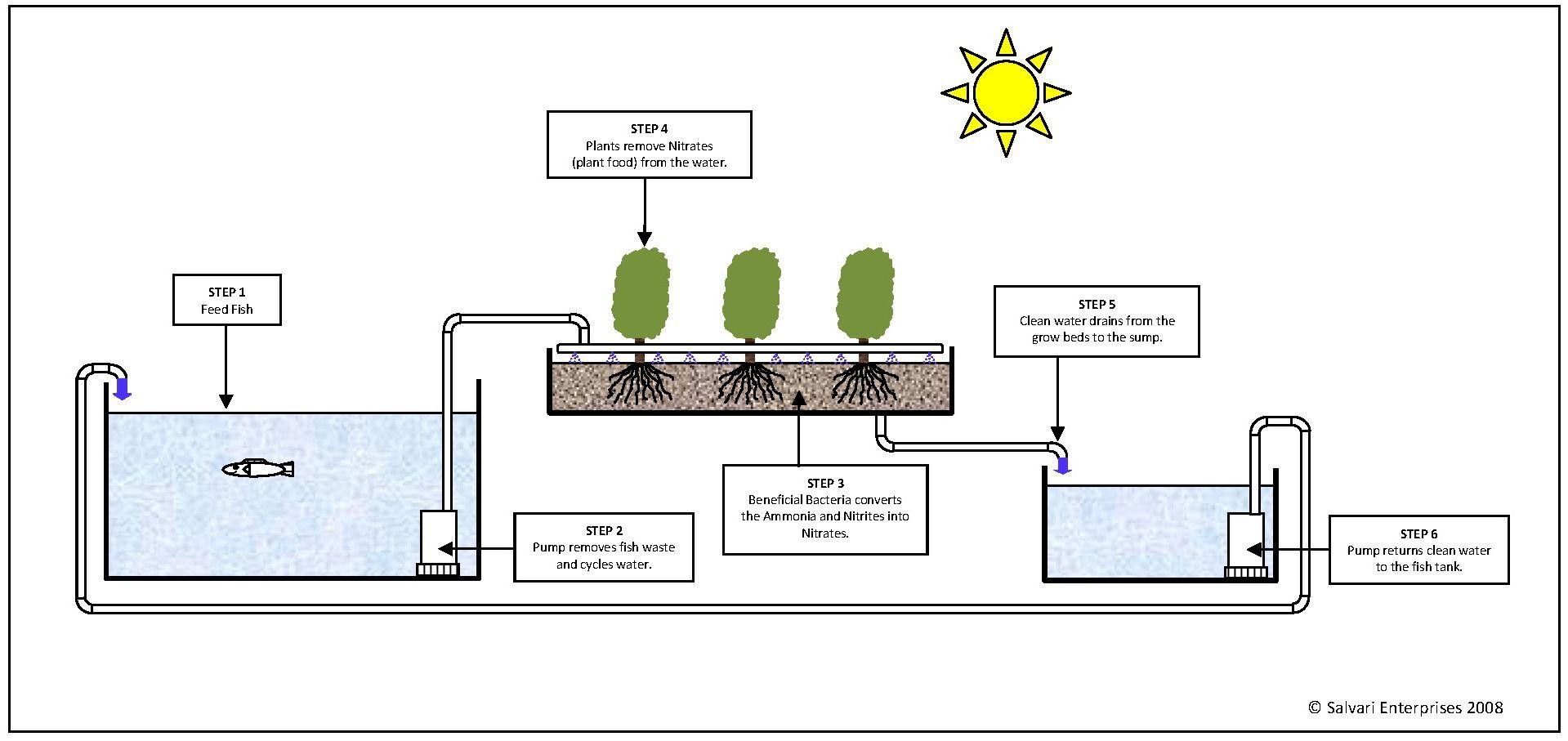 aquaponics diagram check out my personal aquaponics project at www Aquaponics Parts List