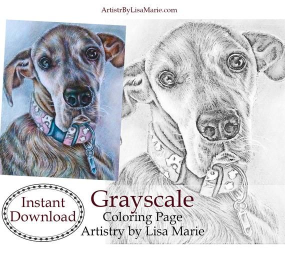 Grayscale Printable Coloring Page Instant Download Digital