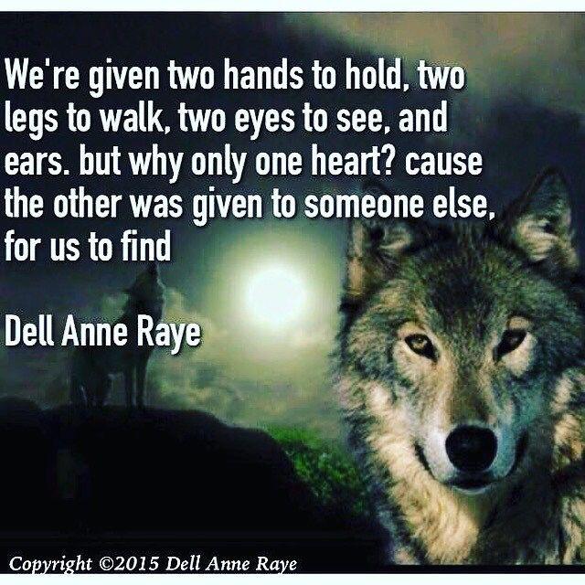Wolfie Magic 3 Wolfie