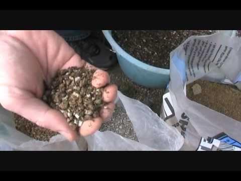 Creating Bonsai Soil Mix Part 1 Youtube With Images Bonsai