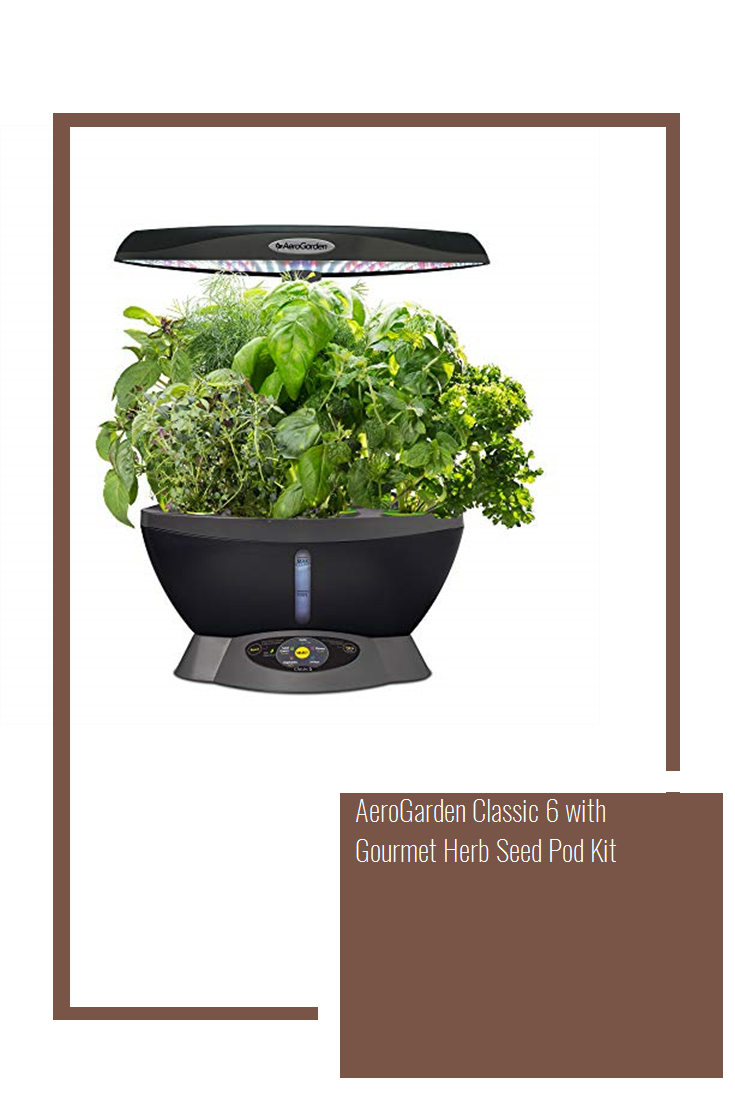 Aerogarden Classic 6 With Gourmet Herb Seed Pod Kit Herb 400 x 300