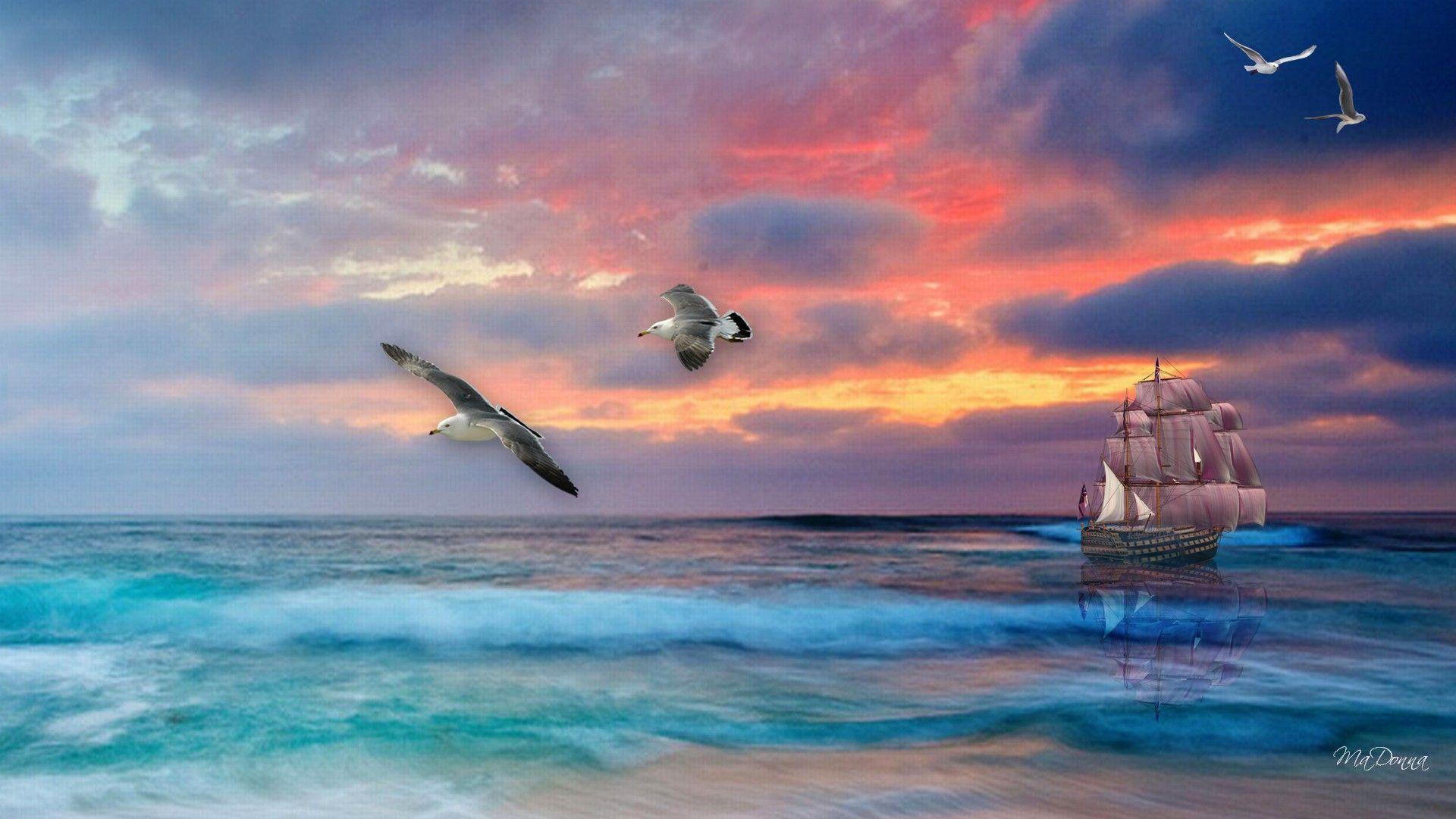 Sail Boat Sailing Sea Sunset Tall Ship Full Hd Wallpaper