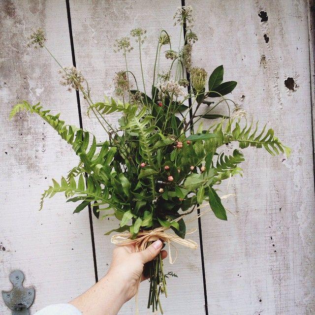 theyoginigypsy nature more motif v g tal planter des fleurs art v g tal et fleurs. Black Bedroom Furniture Sets. Home Design Ideas