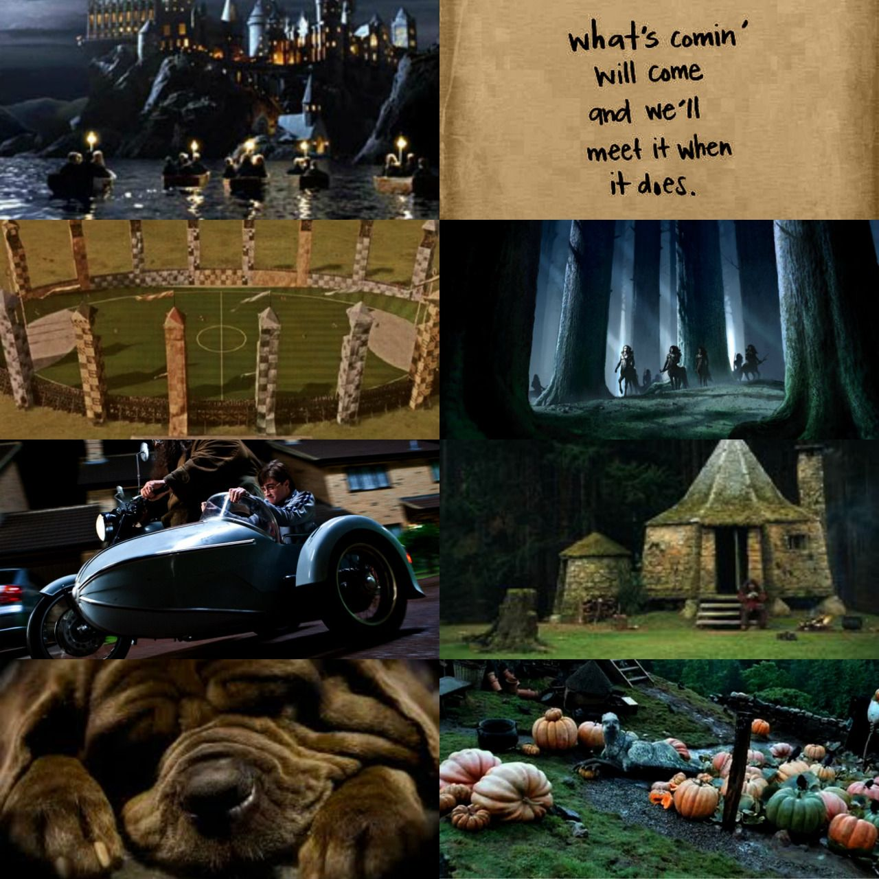 Endless Character Aesthetics: Rubeus Hagrid - Harry Potter by J.K. Rowling.