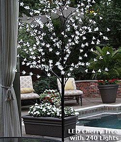 Lighted Cherry Blossom Tree Outdoor Decor Outdoor Outdoor Lighting