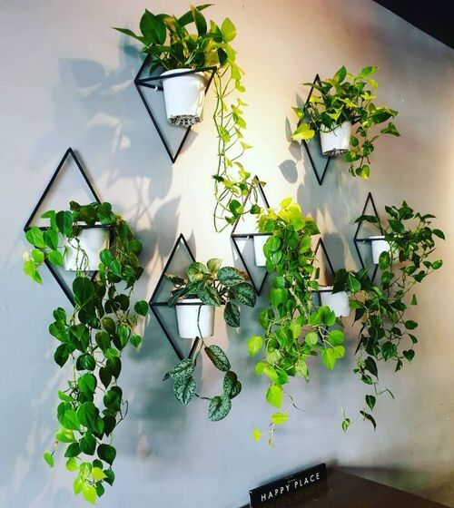 28 Plant Wall Art Ideas for Home Décor