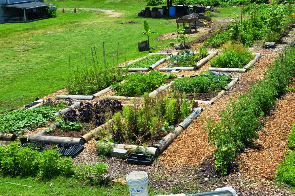 permaculture design examples - Google Search ...