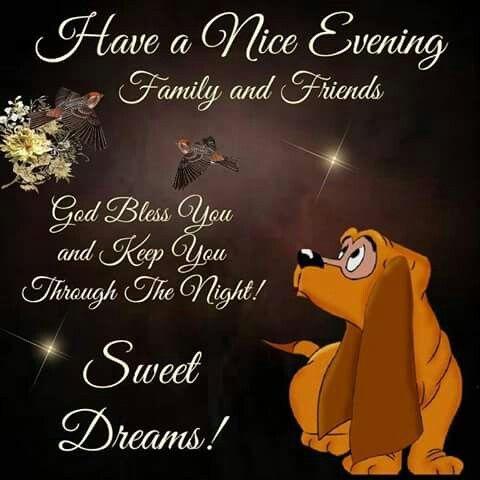 Good Evening Good Night Everyone Good Night Greetings Good Night Sleep Tight