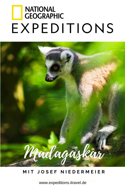 MADAGASKAR! itravel und National Geographic Expeditions nehmen dich mit auf eine aktive Reise zu den spannendsten Orten der Welt... Lass dich inspirieren! 😍✨ #reisetipps #urlaubsziele #reiseziele #urlaub #instagramspots #fotospots #tipps #weltweit #aktiv #aktivurlaub #nationalgeographic #madagaskar
