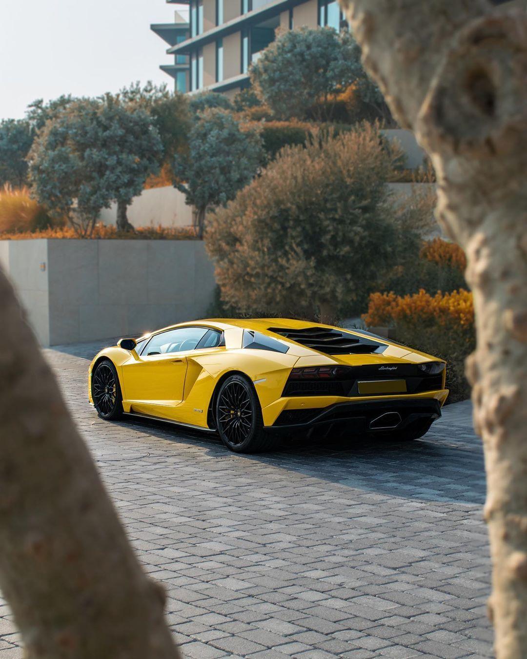 Voiture Dubai Bugatti Chiron Its A Mans World Lamborghini