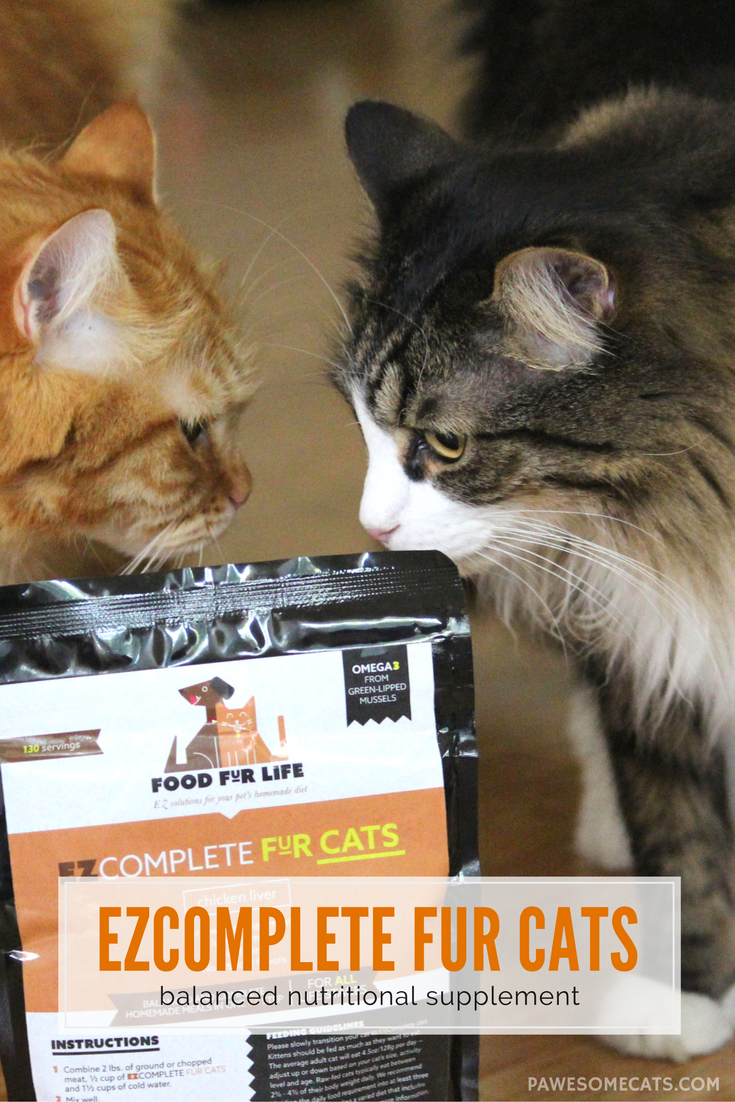 Raw Cat Food Supplement Fur Cats Raw cat
