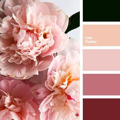 Color Palette 3779 Pink Color Schemes Black Color Palette