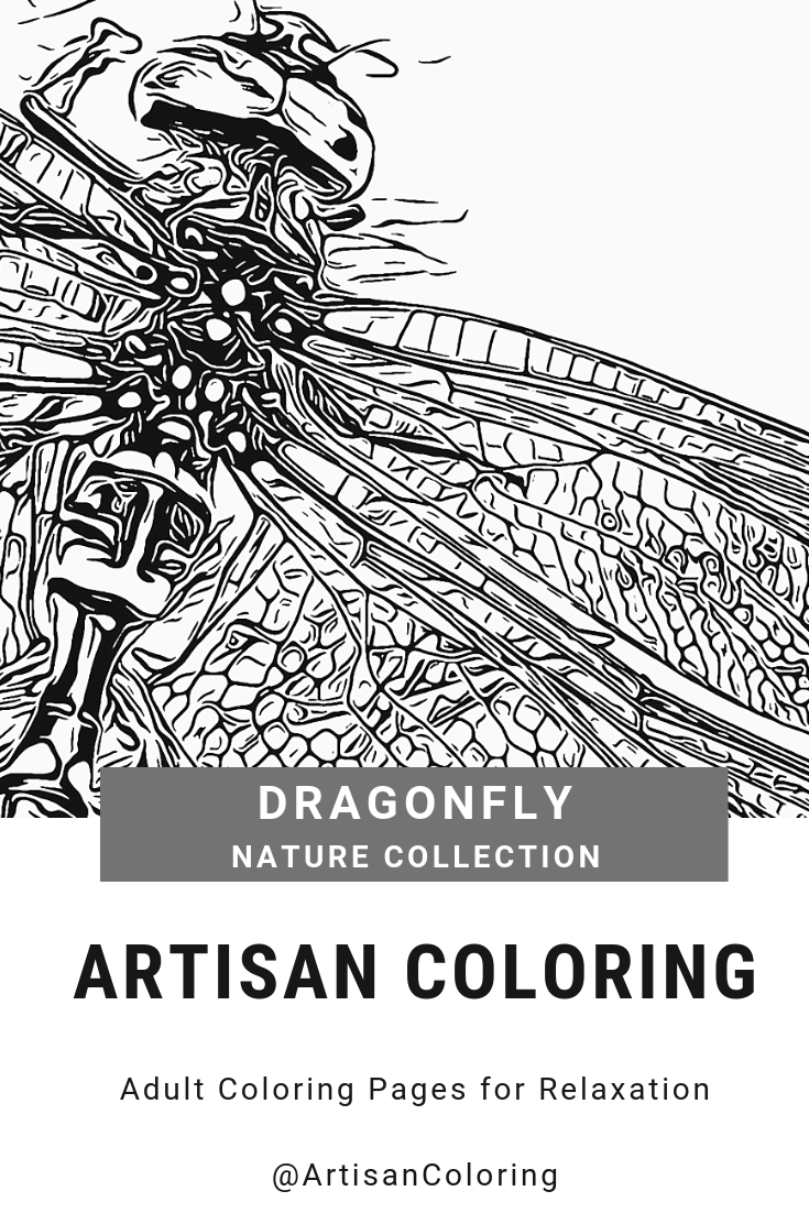 Printable Adult Coloring Page Of A Closeup Of A Dragonfly From The