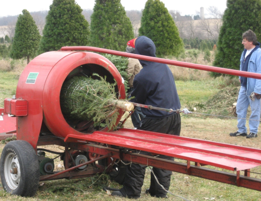 Ben S Christmas Tree Farm 630 279 0216 Front Page In 2020 Christmas Tree Farm Tree Farms Christmas Farm