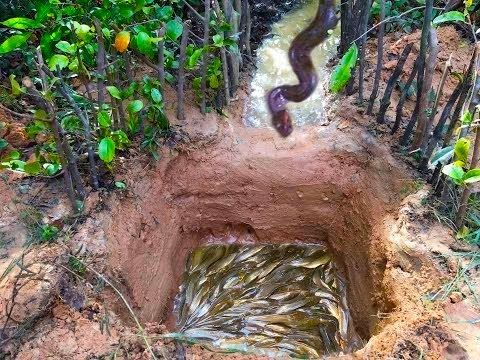 Easy Deep Hole Fish Trap Man Dig A Hole Make Fishing Trap Catch