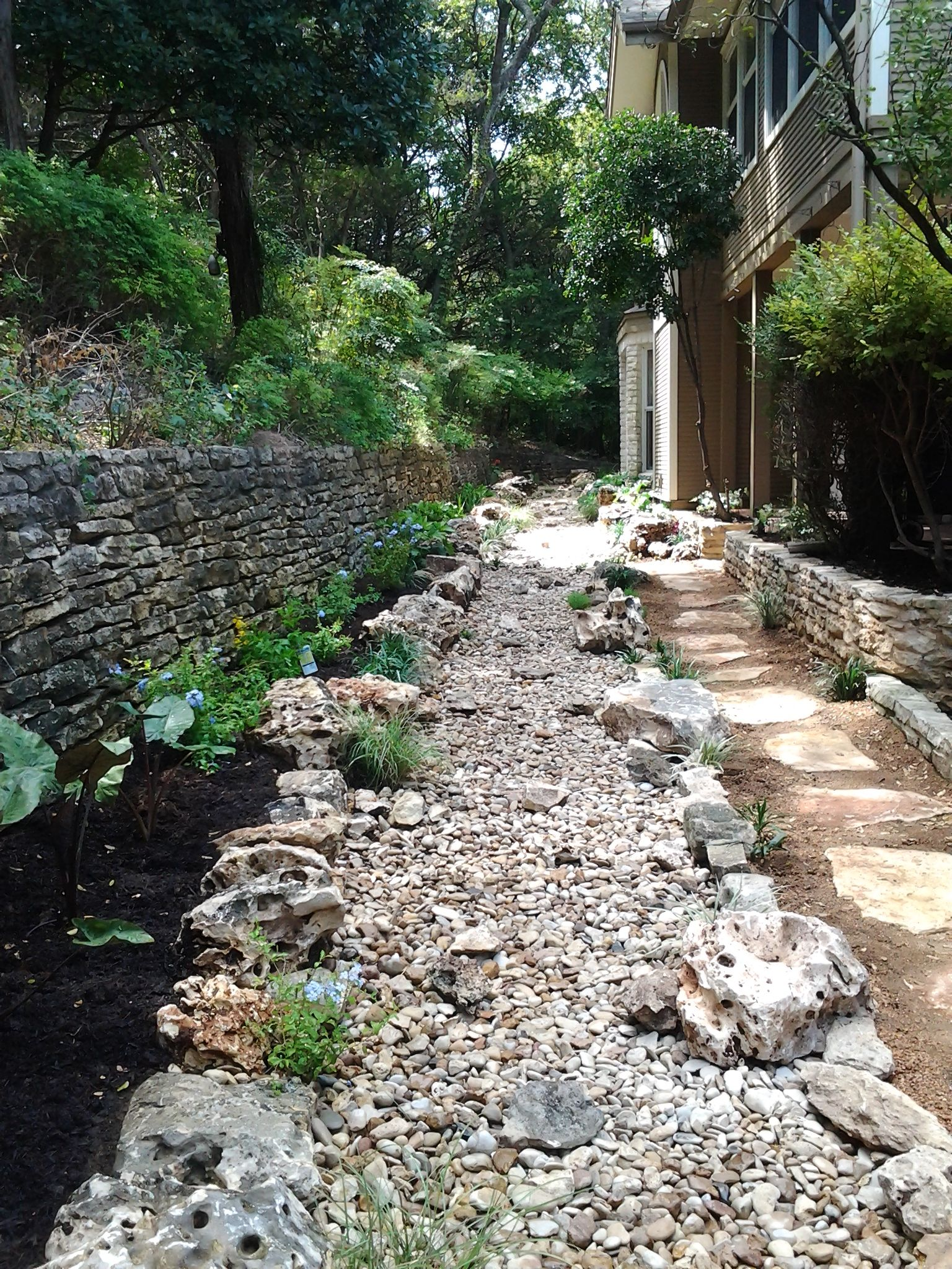 A Dry Creek Bed In Central Austin This Is Complete With A Variety Of Plants For Sun And Shade