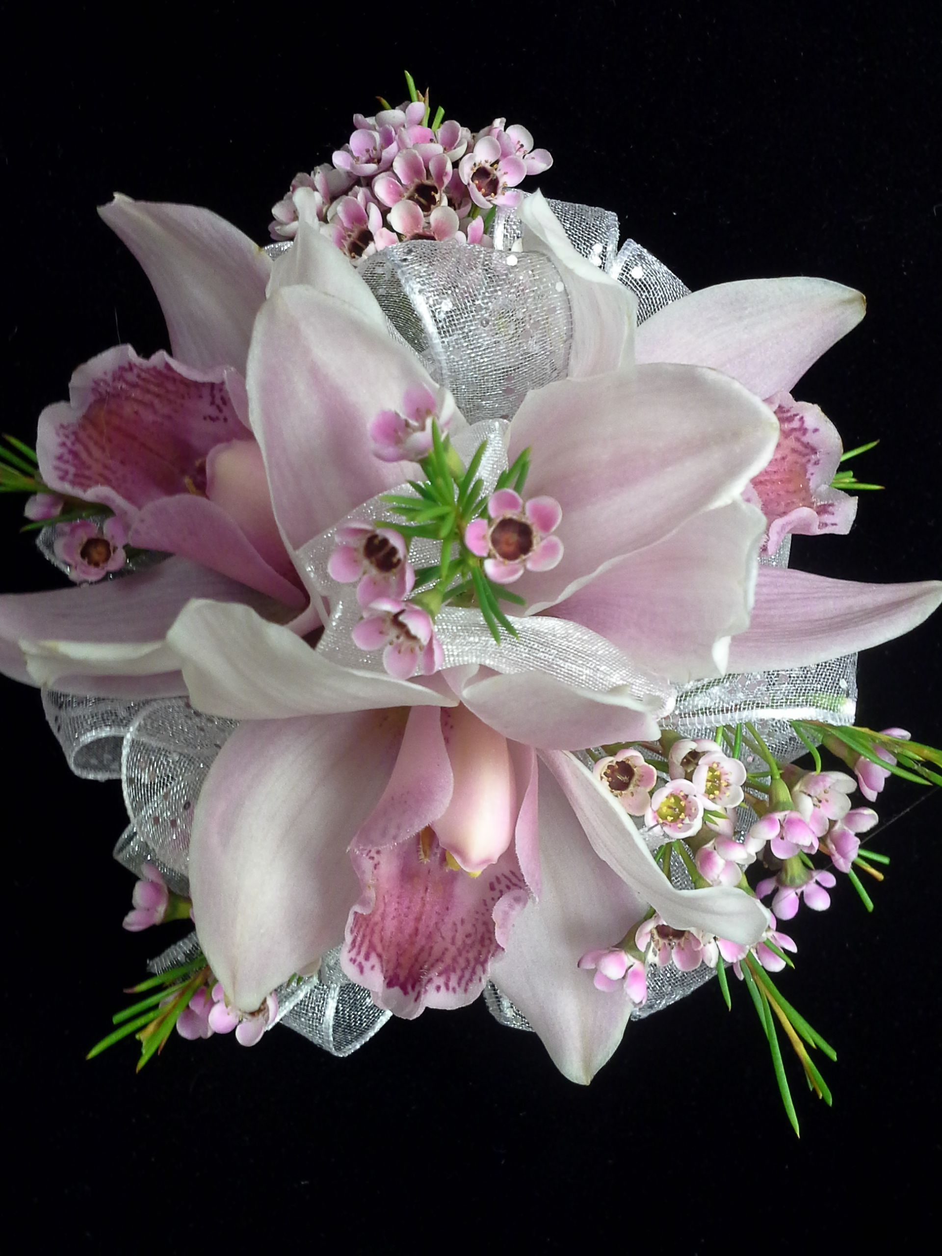 Cymbidium Orchid Wrist Corsages: White / Mauve Cymbidium Orchid And Pink Waxflower Prom